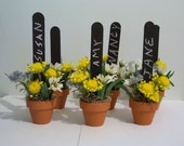 Flower Pot Place Card Holders for Garden Party - WestTwinCreations