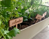 Set of 10 Etched Wood Herb Garden Plant Markers - MileNine