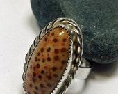 Sterling Petrified Palmwood Ring