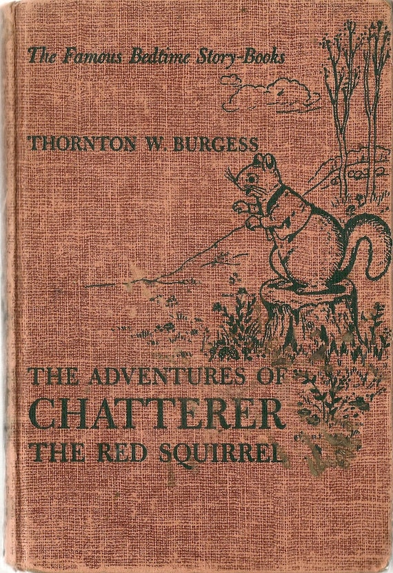 VINTAGE KIDS BOOK The Adventures of Chatterer the Red Squirrel