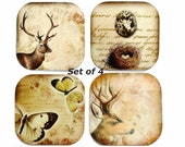 Butterfly Coaster, Deer Coasters, Bird's Nest Coaster, Set of 4, Nature, Animal, Shabby Chic - missbohemia
