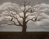 "Fruitless 19""x24""-leafless tree with crows and rain clouds"