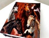 Horse photo album 100 photos.