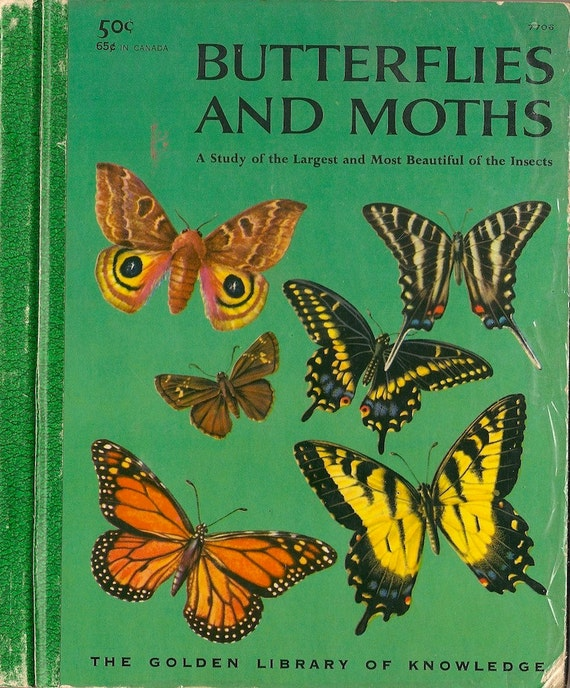 VINTAGE KIDS BOOK Butterflies and Moths: A Study of the Largest and Most Beautiful of the Insects