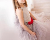 Pixie tutu dress...Silver satin Bodice...Silver grey tutu with Red Rose accents.Flower Girl Dress..Vintage Photography Prop - HippityHootNotion
