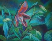 pasteltekening bloem - HermaWuismanpastel