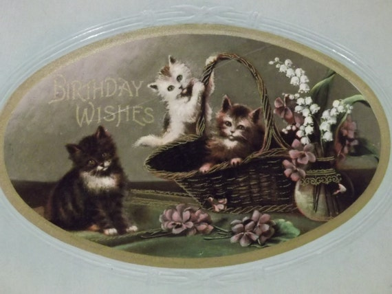 3 Fuzzy Kitty Cats in a Basket - Vintage Birthday Postcard - Gold Trim - Germany - 1911