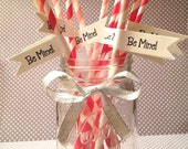 25 Valentine's Day Paper Straws AND Straw Flags - Be Mine - Pink - Red