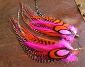 Bright Neon Feather Earrings Spring Fling Fashion Accessory Hot Pink Bright Orange and Grizzly Long Feather Earings - PrettyVagrant