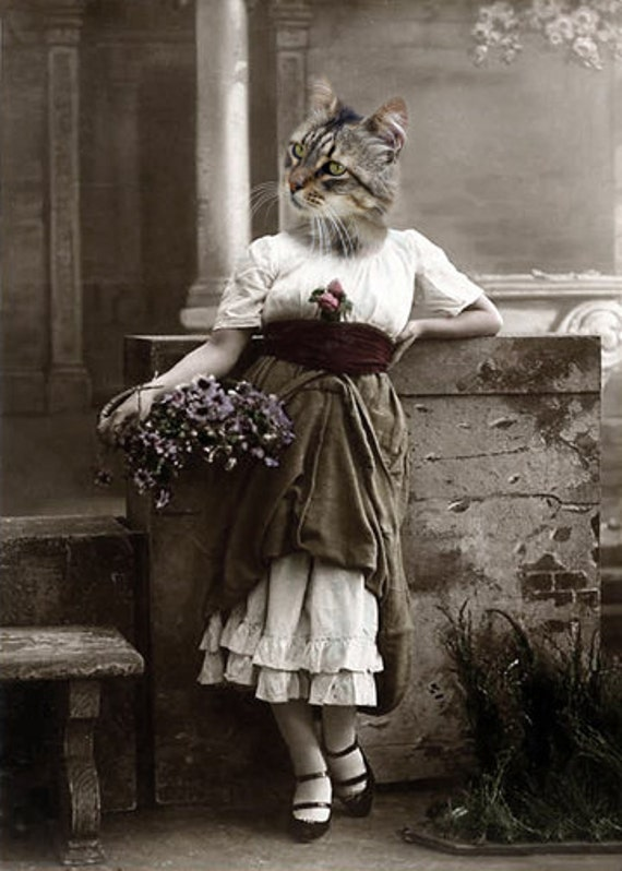 Karen - Vintage 5x7 Cat Print - Anthropomorphic - Altered Photo - Unique Art - Photo Collage - Whimsical Art - Gift Idea