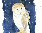 Giclee Art Print, Owl Watercolor Painting, Blue, Black, Night Sky, Starry Night, Barn Owl