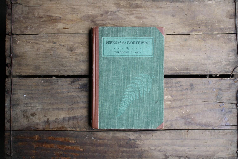 Ferns of the Northwest - littlebyrdvintage