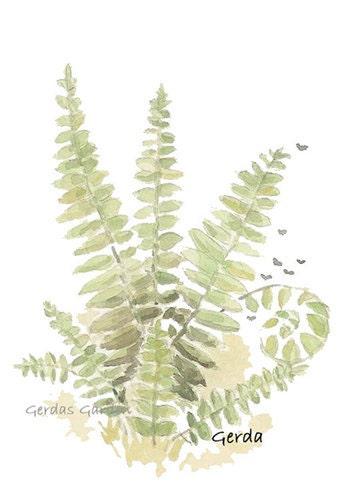 Spring Botanical art print Woodland Forest Ferns 4x6 print - GerdasGarden
