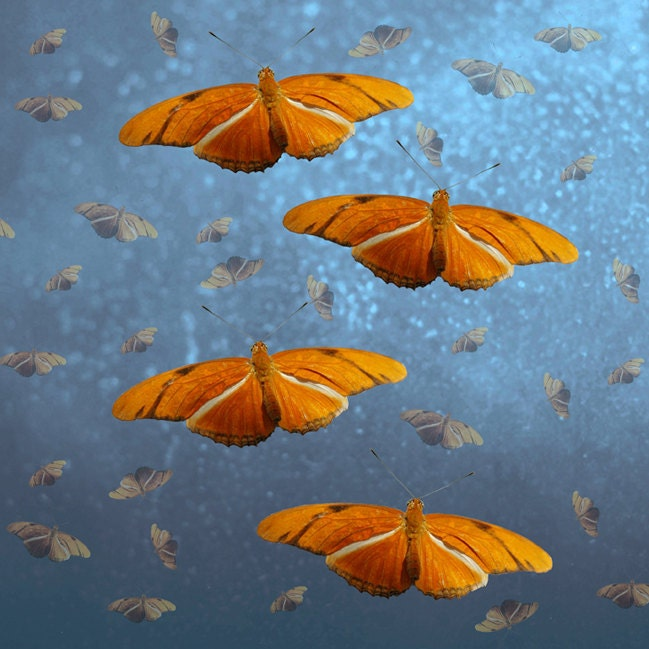 Surreal Home Decor, 20x20 Fine Art Print, Orange Butterflies, Sparkly Blue - TheShutterbugEye