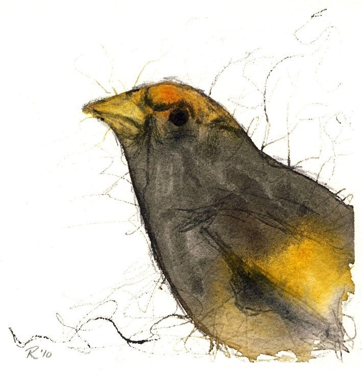 Evening Grosbeak - archival print of watercolor painting