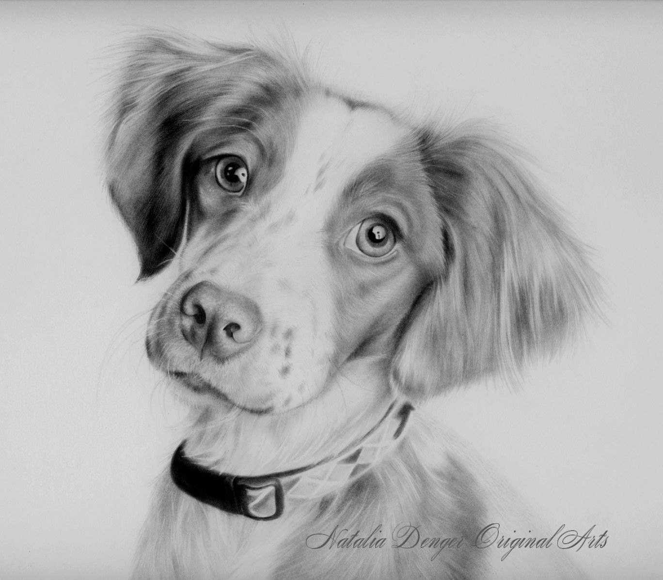 Easy Dog Drawings In Pencil Cute dog pet portrait pencil