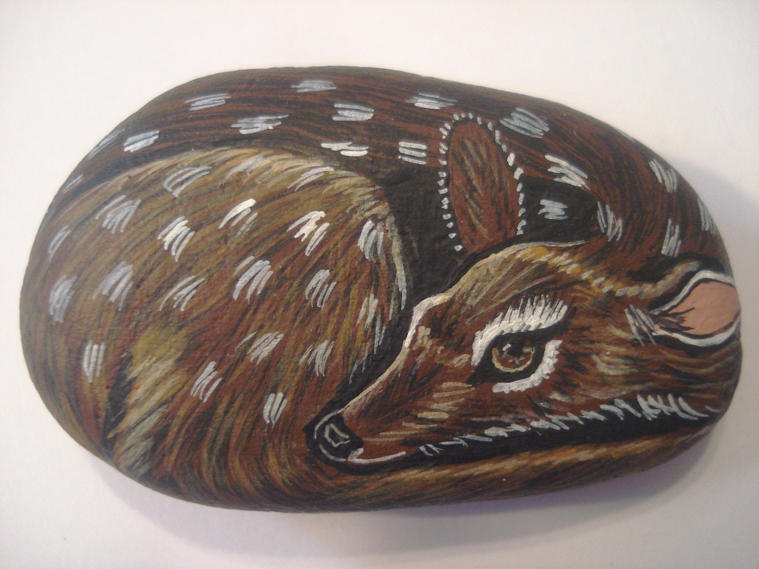 Fawn deer hand painted on a stone - pet rock. - wildstonepainter