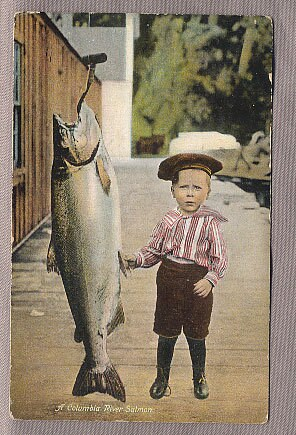 vintage paper ephemera lot of 6 early OREGON POSTCARDS boy w salmon Columbia River more - mudintheUSA