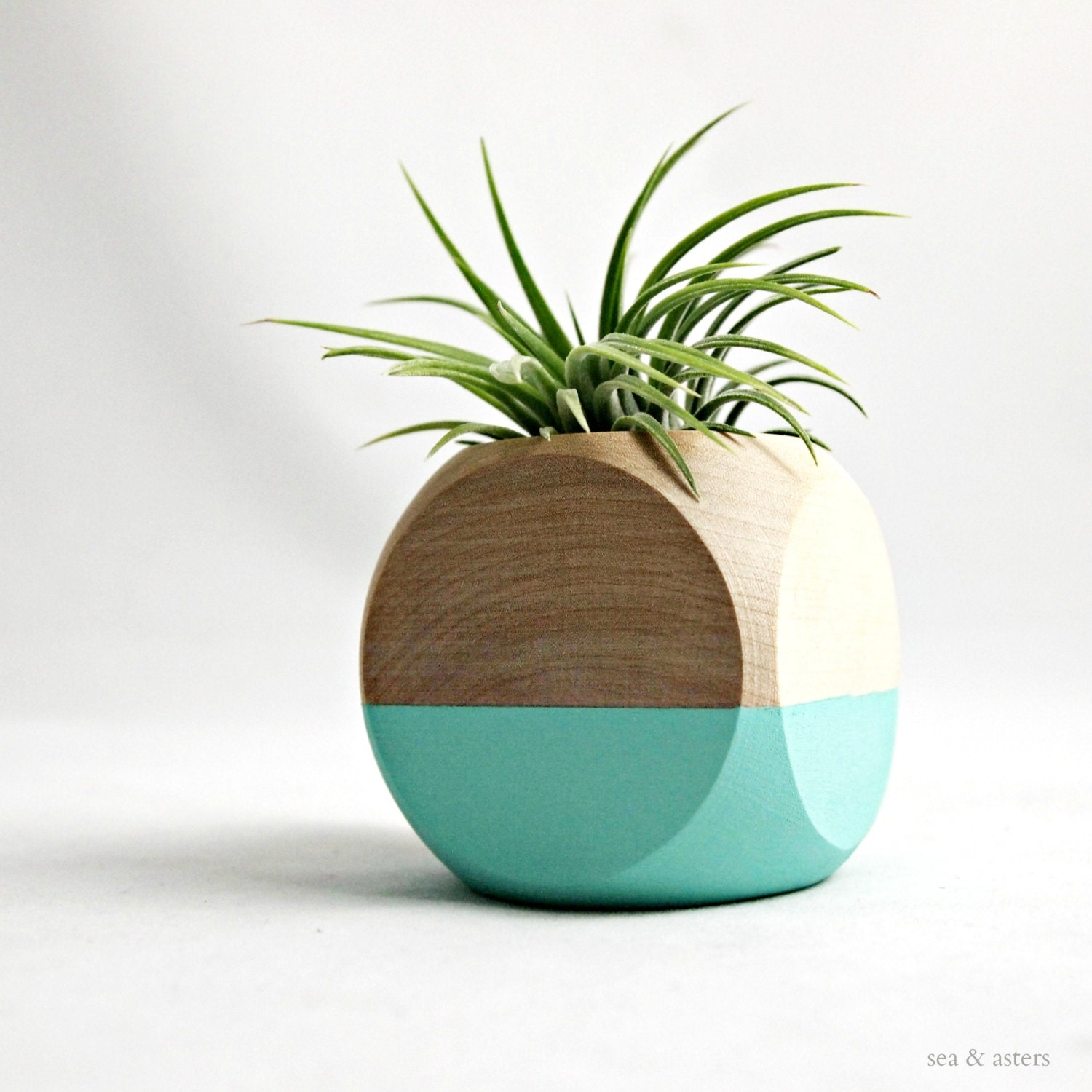 Air Plant Cube Planter // Aqua - Natural Wood Colorblock // Home and Garden - seaandasters