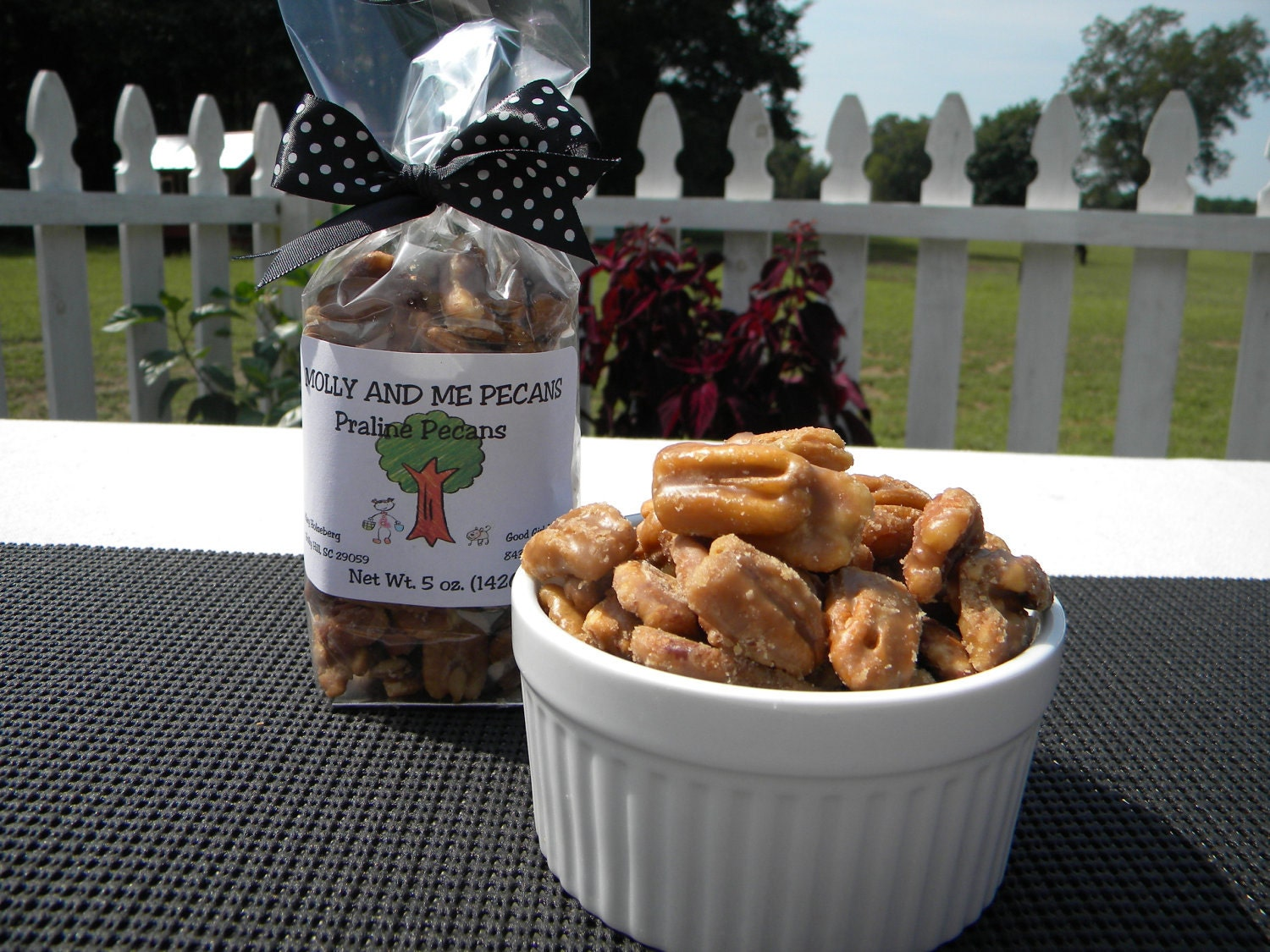 Praline Pecans - From our Farm to You