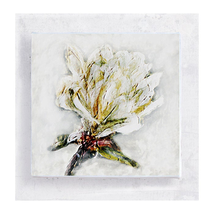 Magnolia Art Block - 5x5 Canvas Print on Wood Frame  - Flower Still Life - Wall Art - Home Decor - PeyLu