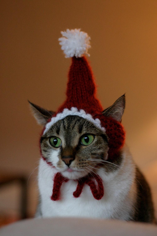 The Santa Cat Hat