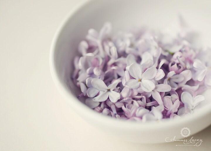 Bowl of Lilacs - 11x14 Fine Art Print - Lilacs in a Bowl Original Wall Art - Purple Petals - summerl