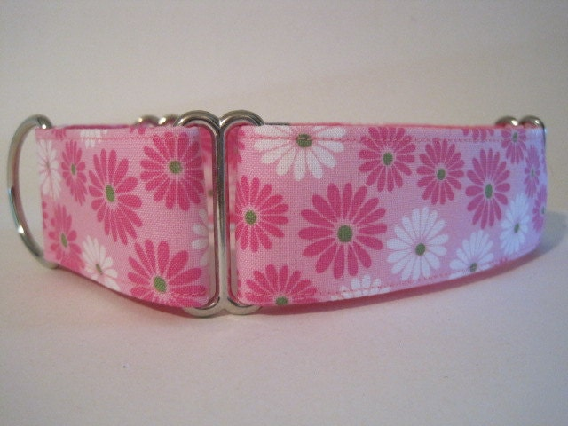 1.5 inch Martingale Collar, Pink, Daisy, Floral, Greyhound Collar, Dog Collar, Daisies, Greyhound Martingale