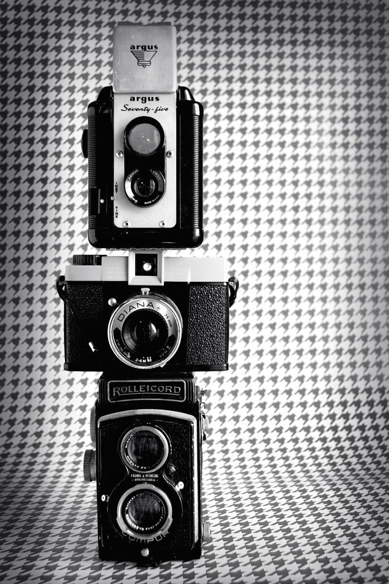 Dapper 5x7 Fine Art Print--Handsome Vintage Houndstooth Cameras Masculine Photograph