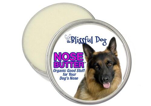 Τι μπορείτε να χρησιμοποιήσετε για την στεγνή μύτη του σκύλου...