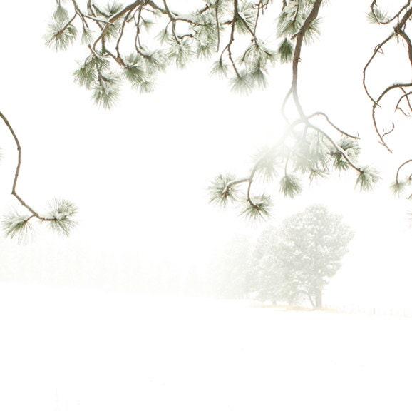 Minimal White Fine Art Photography Winter Snow Landscape 8x8 - lucysnowephotography