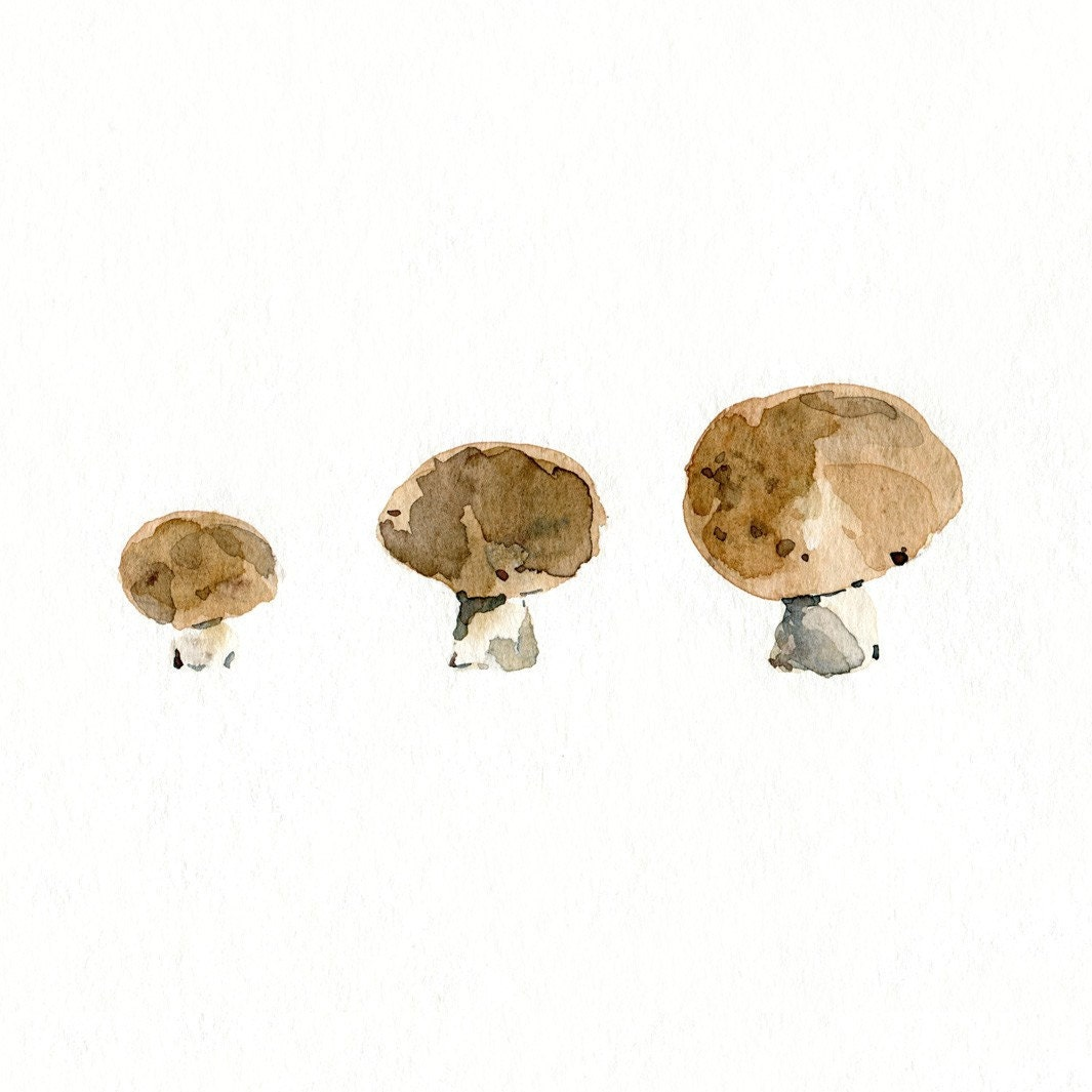 3 little mushrooms Print of Original Watercolor  still life, botanical, woodland, natural history painting. kitchen decor, limited edition - TheJoyofColor