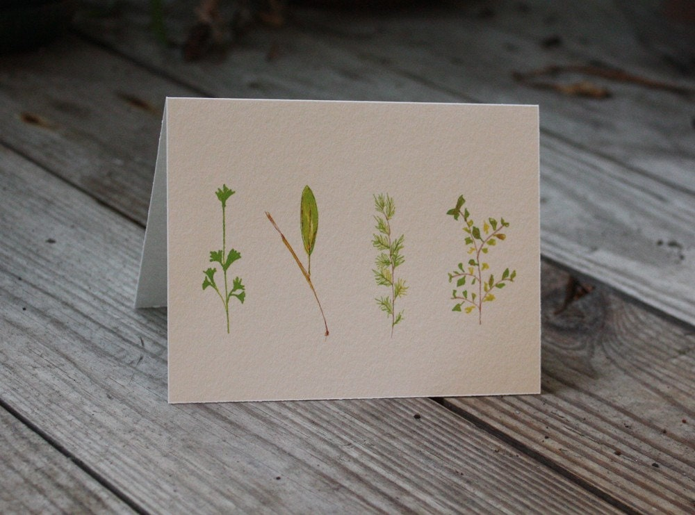 Parsley Sage Rosemary and Thyme NOTE CARDS
