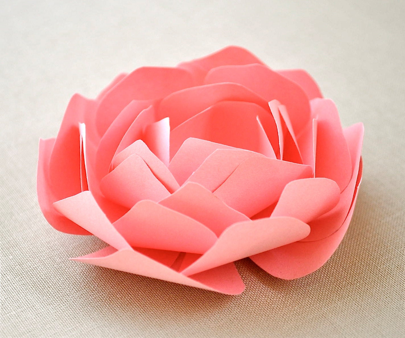 beautiful paper flowers from imeondesign