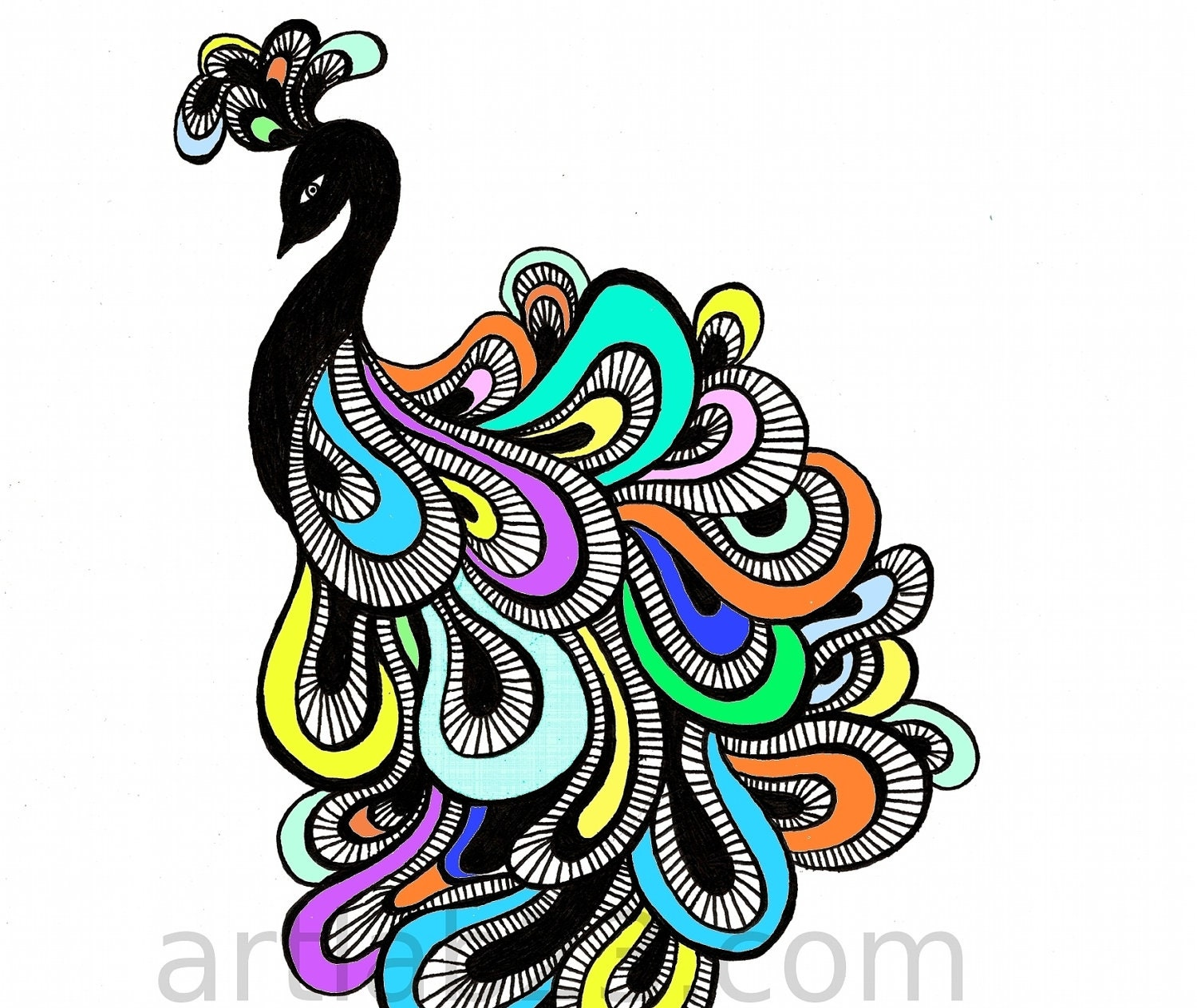 Abstract peacock drawing