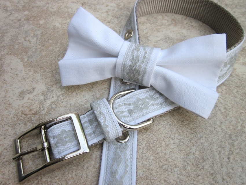 custom wedding dog collar and bow tie weddingbee photo gallery