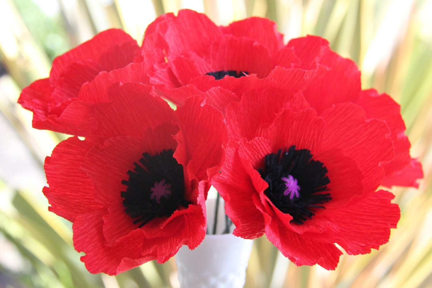 Poppy Flowers For Sale Images Fresh Lotus Flowers