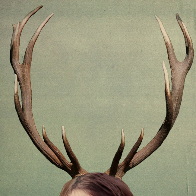 Fathers Day Surreal Antler Photograph Holiday Deer