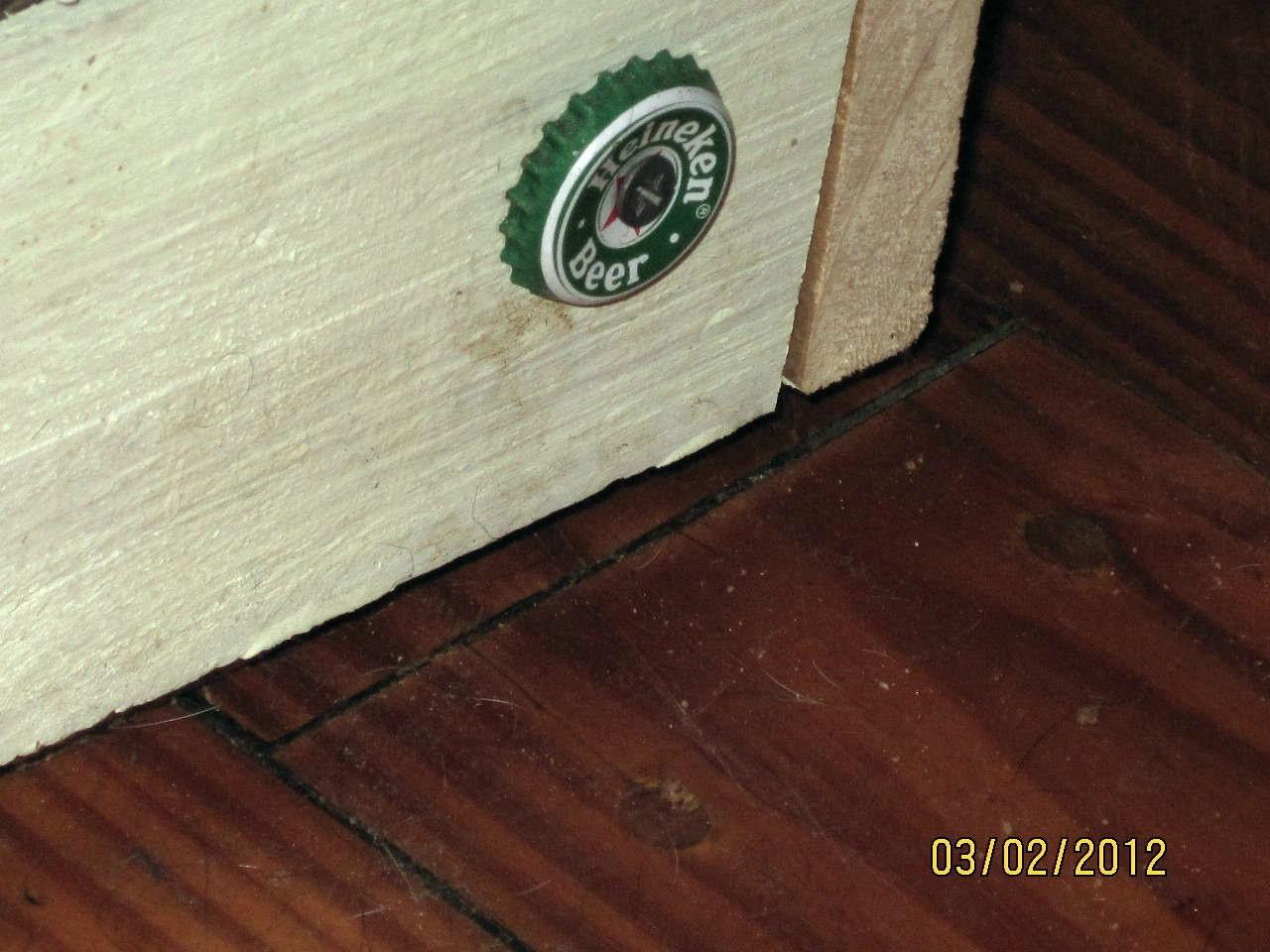 Perro Criado tazón de fuente / planta de pie