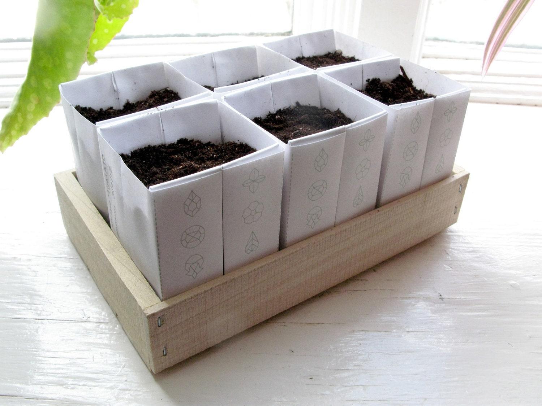 Heirloom Seed Kit in Paper Envelopes