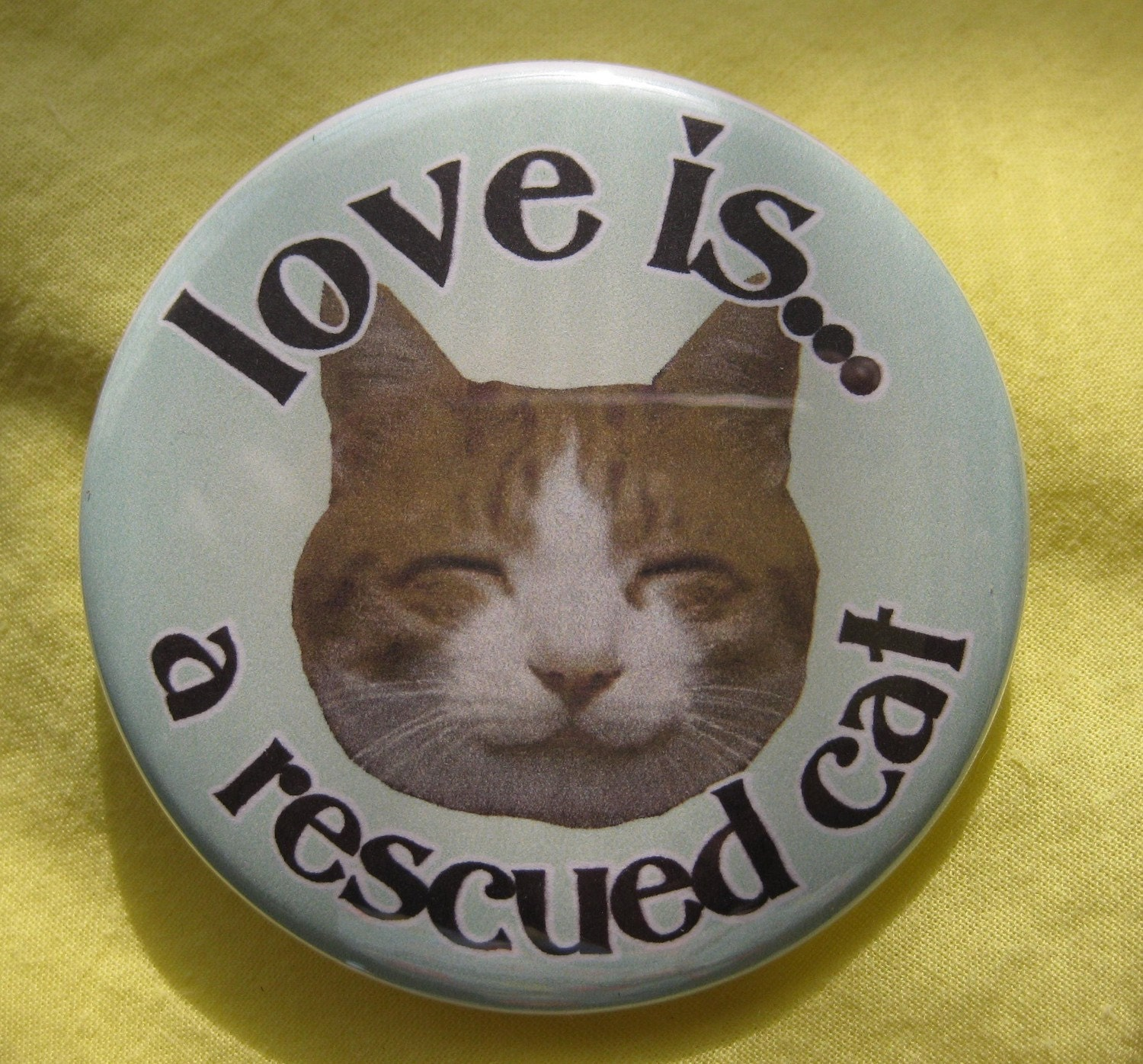 love is ... a rescued cat .... orange tabby ... badge