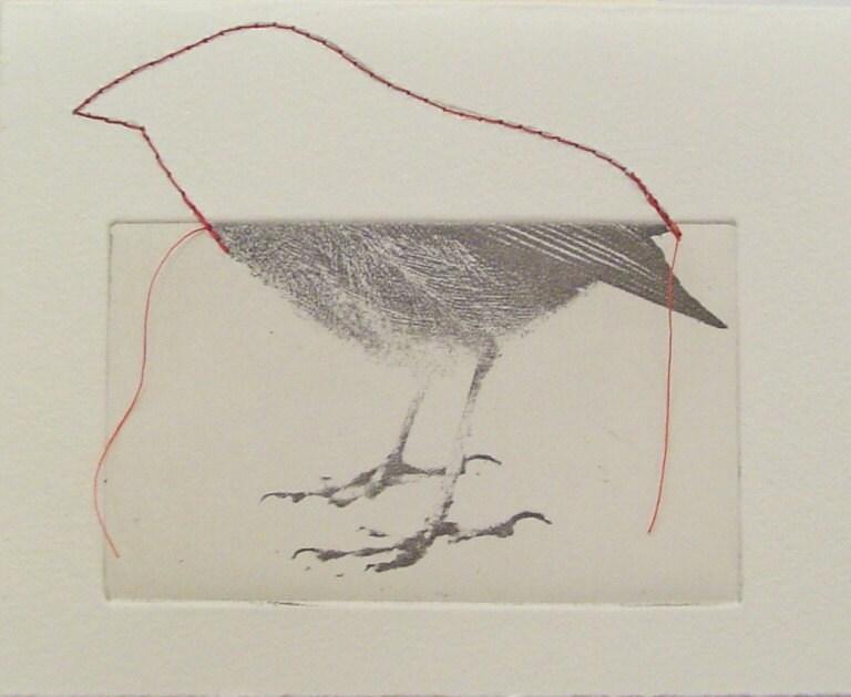 original etching of a bird,hand pulled - Fleurografie
