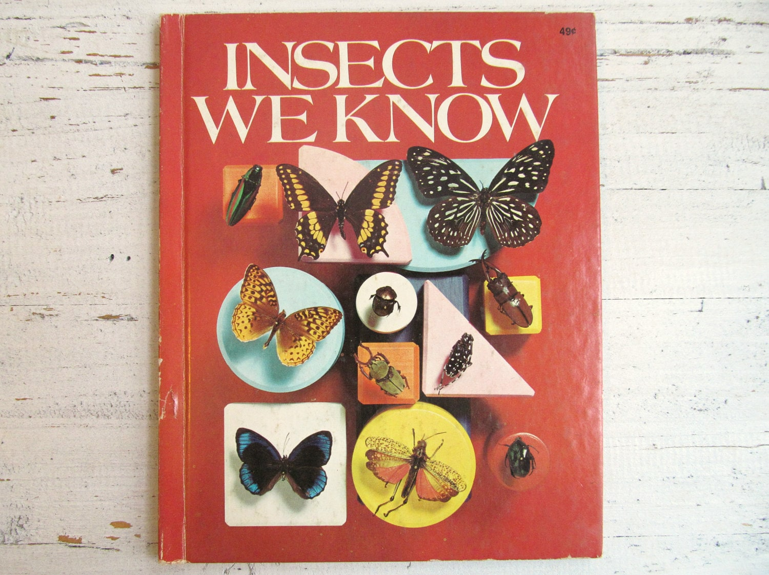 Vintage 1960's Children's Book- Insects We Know - elizabethwrenvintage