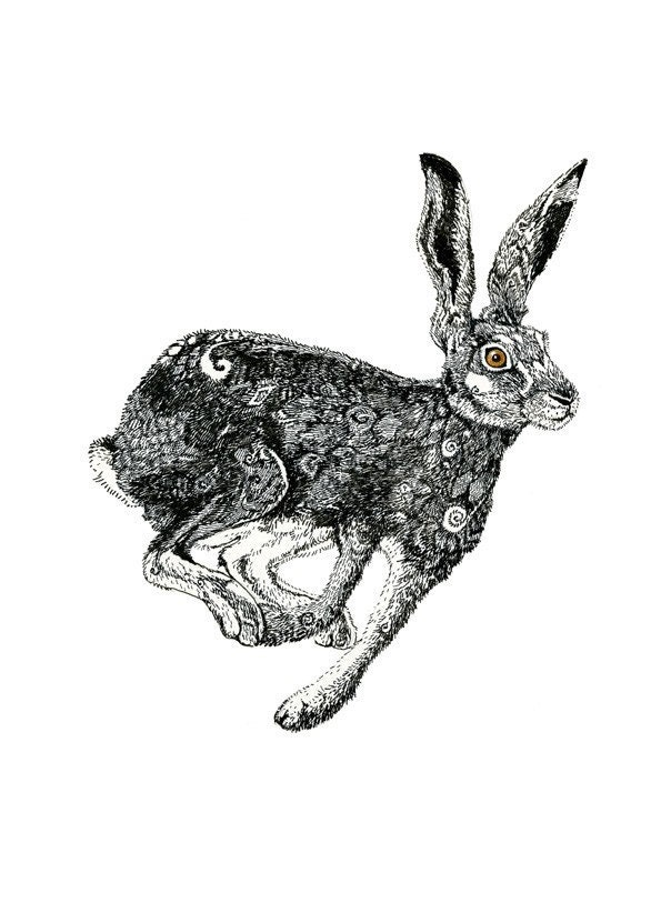 Giclee Hare Print pen and ink Hare illustration 11.7x16.5 - ChasingtheCrayon