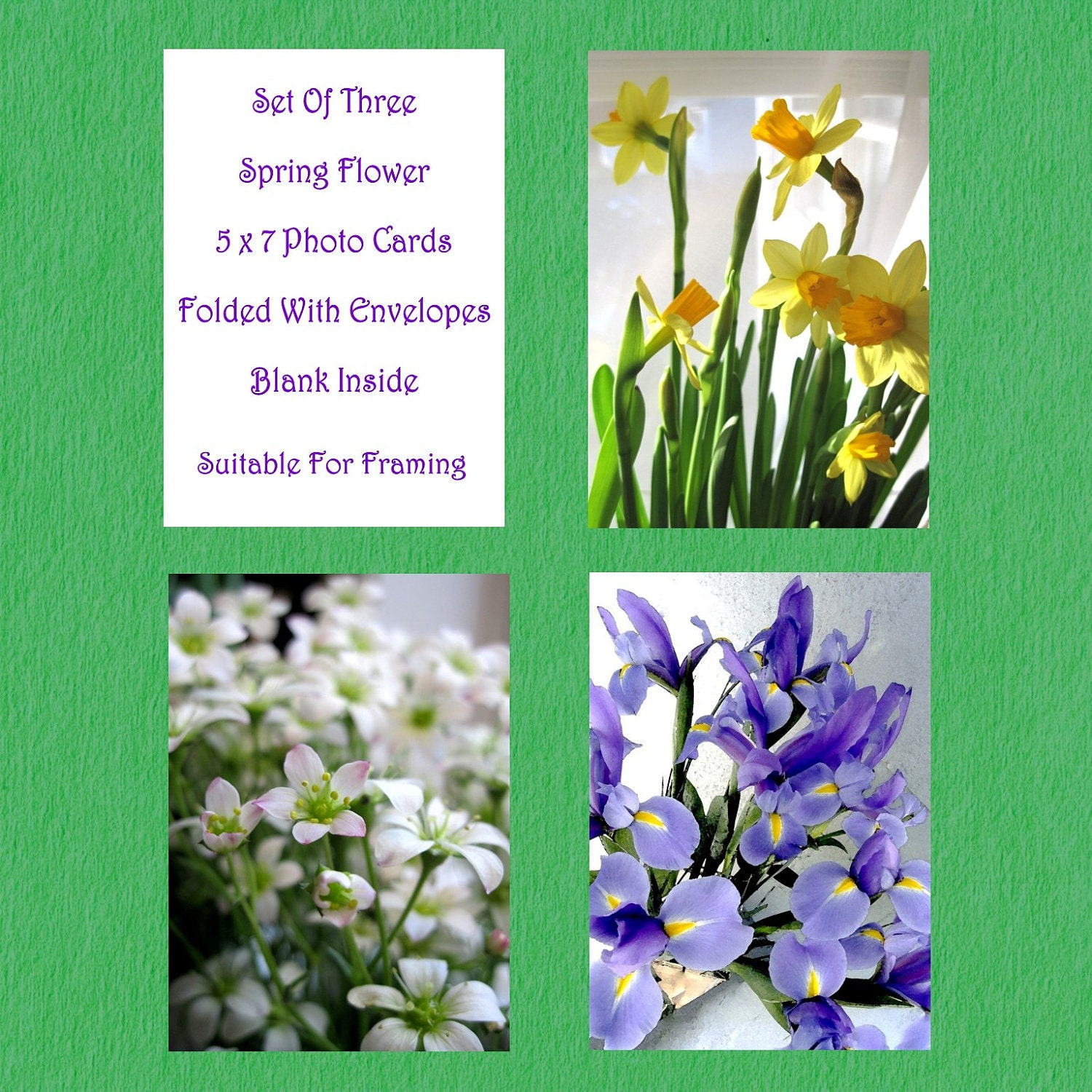 SPRING CARDS FLOWERS Photo Cards, Set of Three 5 x 7 Spring Flower Photos, Folded Cards, Blank Inside, With Envelopes