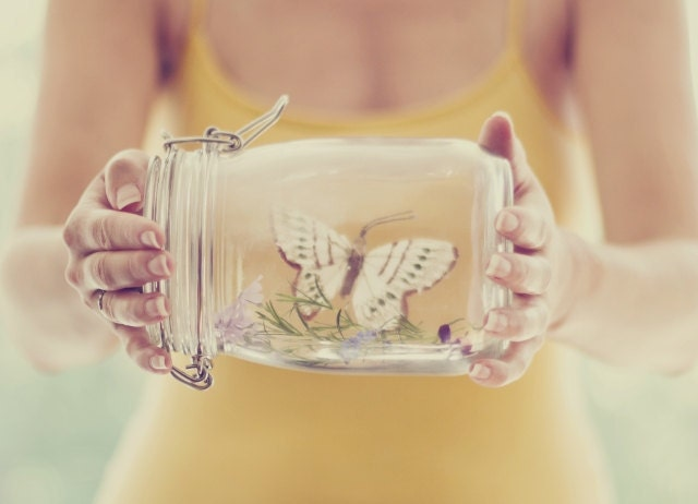 Preservation - approx 13x18cm / 5x7in fine art glossy photo print - butterfly, jar, nature, environment, ecology, fpoe - karinelizabeth
