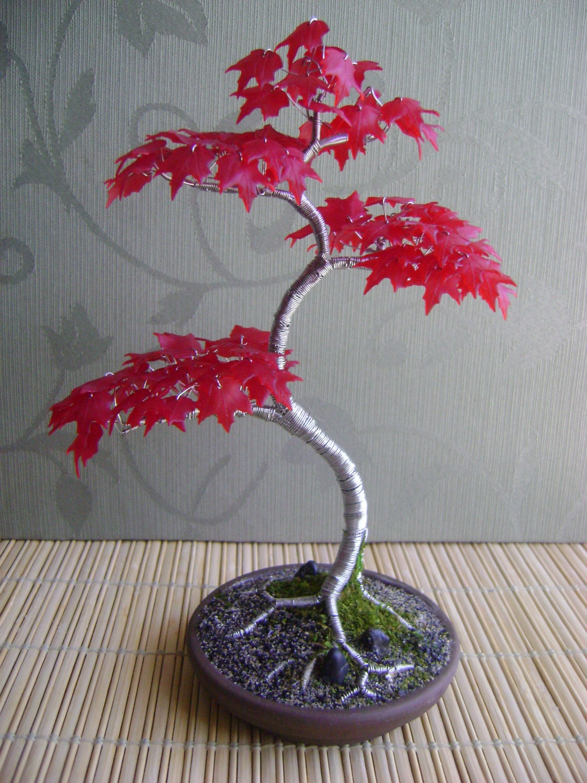Heritage Bonsai Japanese Red Maple Steel Tree - HeritageBonsai