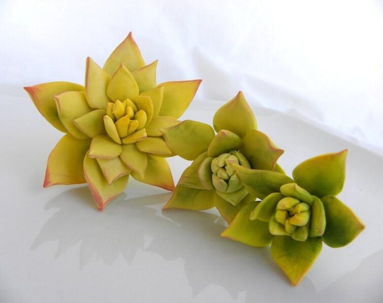 Edible Wedding Cake Topper Sugar Succulents