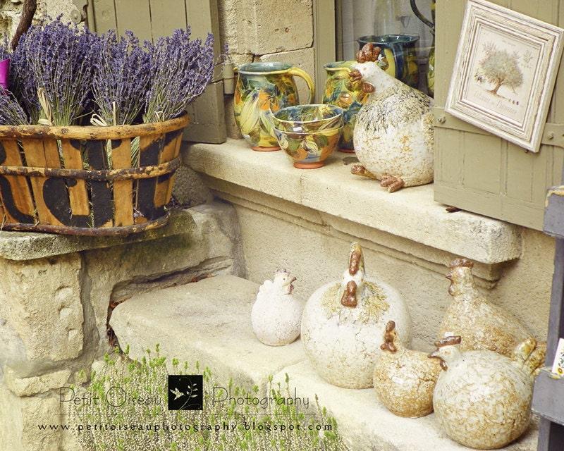 La Treille de Provence - (8x10) - petitoiseauphoto