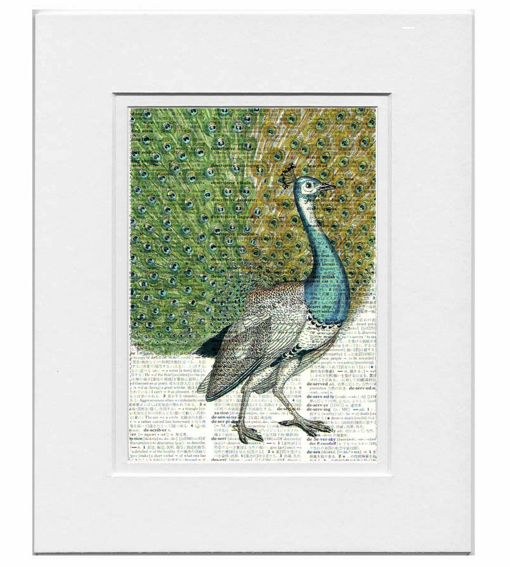 PEACOCK Portrait1- ARTWORK printed on Repurposed Vintage Dictionary page- FREE Domestic Shipping